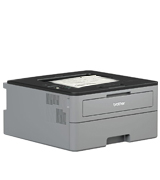Brother HL-L2350DW Compact Monochrome Laser Printer with Duplex Two-Sided Printing