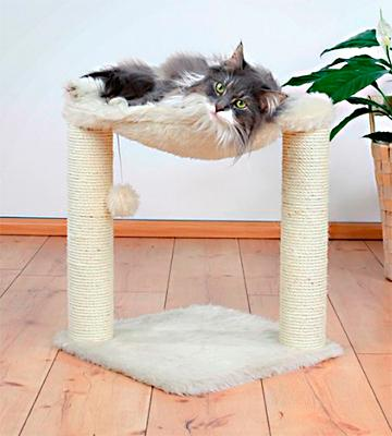Review Of Trixie Pet Products Baza Cat Tree