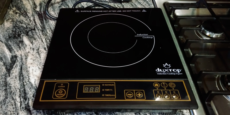 Duxtop 8100MC 1800W Portable Induction Cooktop Countertop Burner in the use