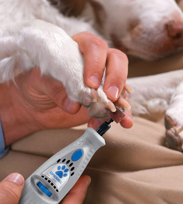 Review of Dremel 7300-PT 4.8V Cordless Pet Dog Nail Grooming & Grinding Tool