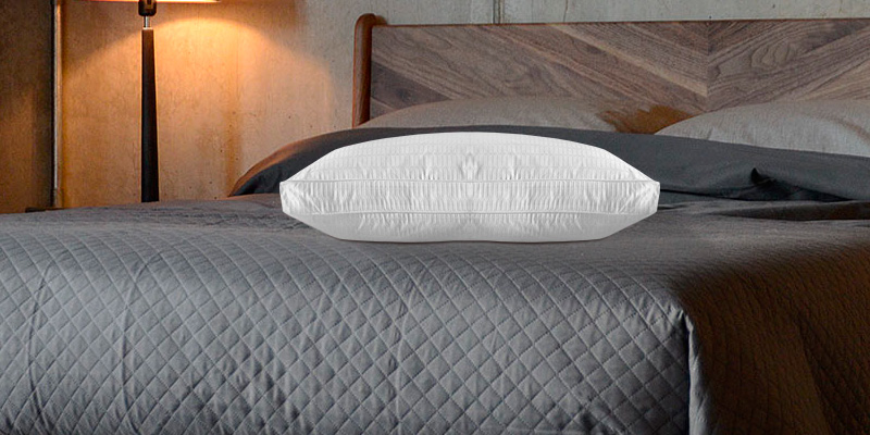 Review of Basic Beyond 2 Pack Luxury Gusseted Goose Down Feather Pillow