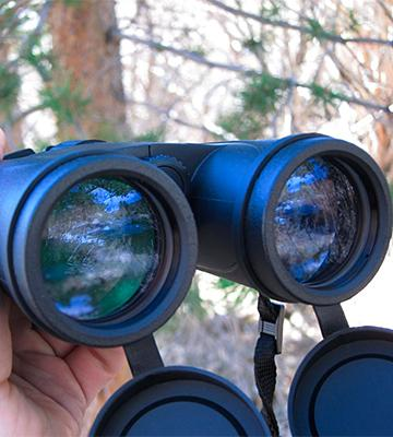 Review of Eagle Optics SHK-4208 Shrike Roof Prism Binoculars