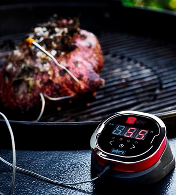 Review of Weber iGrill 2 Thermometer