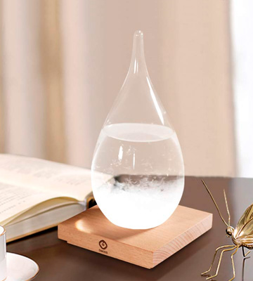 Review of 3D Home New-Large Storm Glass Weather Predictor