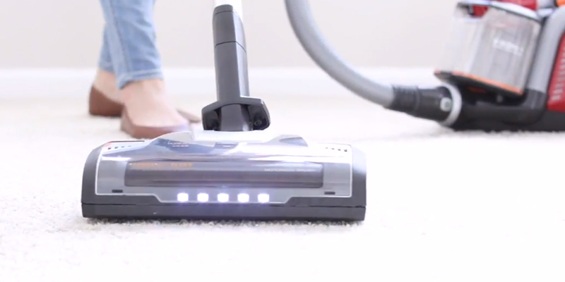 Electrolux EL4335B Ultra Flex Canister Vacuum in the use