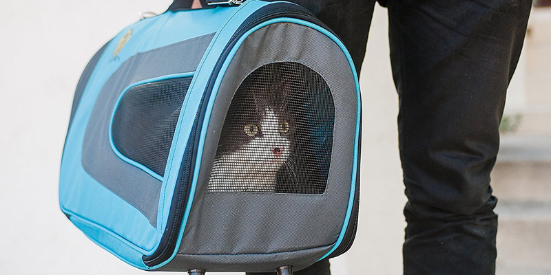 Review of Pet Magasin BlueCarrier001 Soft-Sided Cat Carrier
