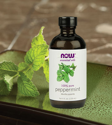 Review of Now Foods Peppermint Essential Oil