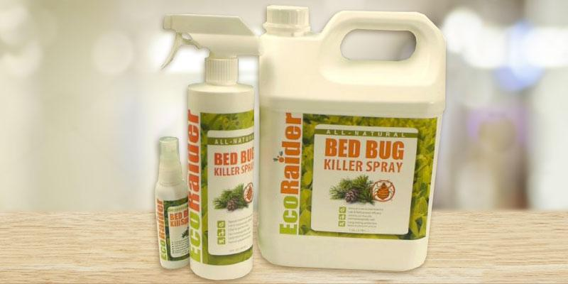 EcoRaider Non-toxic Bed Bug Killer in the use