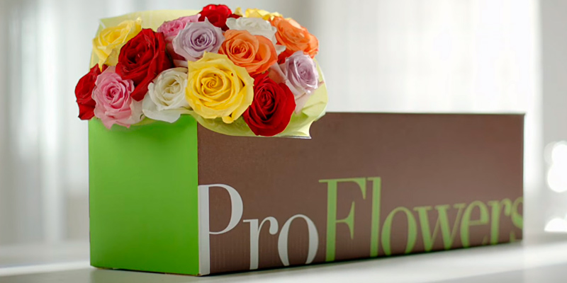 ProFlowers Online Flower Delivery in the use