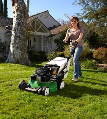 Review of Lawn-Boy 10734 Self Propelled Gas Lawn Mower