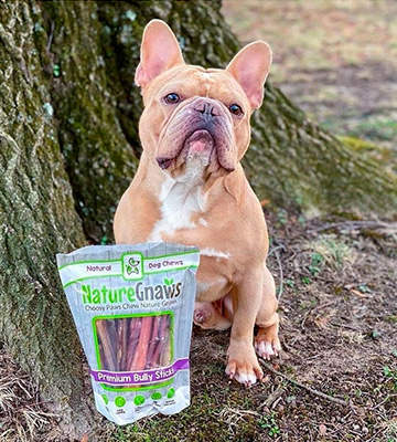 Review of Nature Gnaws Bully Sticks Beef Chew Treats for Dogs