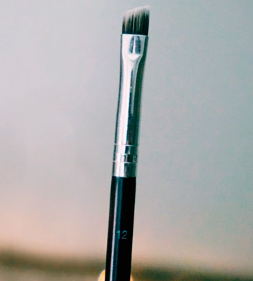 Review of Anastasia Beverly Hills #12 Duo Eye and Brow Brush