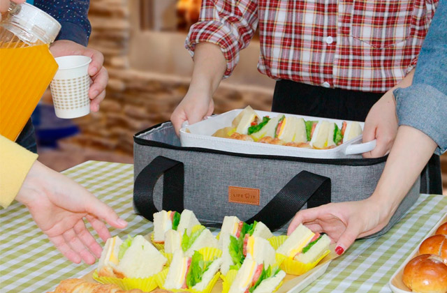 Best Insulated Casserole Carriers