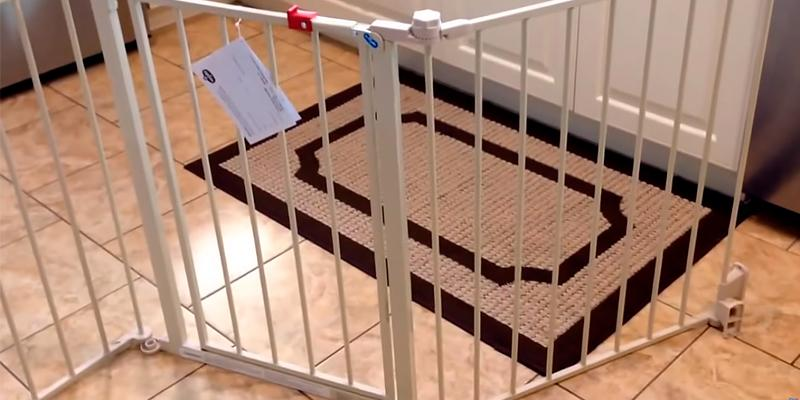 Review Of Regalo Super Wide Baby Gate