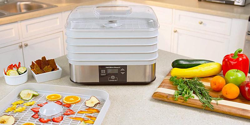 Hamilton Beach 32100A Food Dehydrator in the use