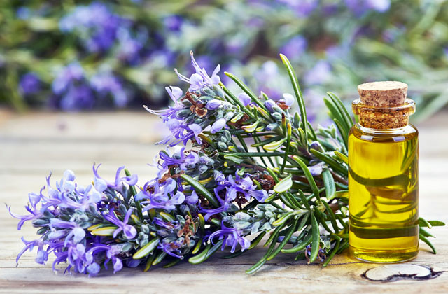 Best Massage Oils for Total Relaxation