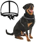 Droiee Adjustable Dog Harness Collar
