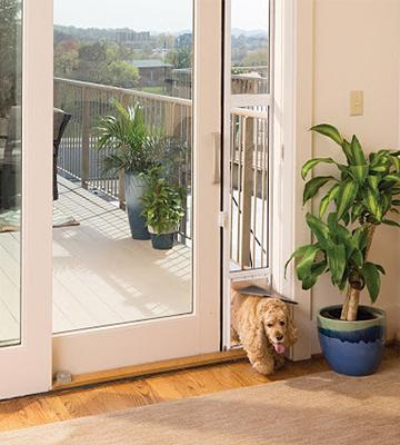 Review of PetSafe PPA11-13124 Patio Panel
