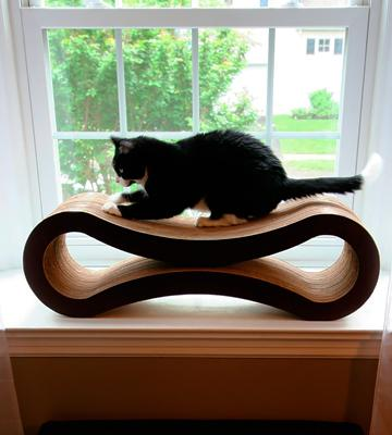 Review of PetFusion Ultimate Cat Scratcher Lounge