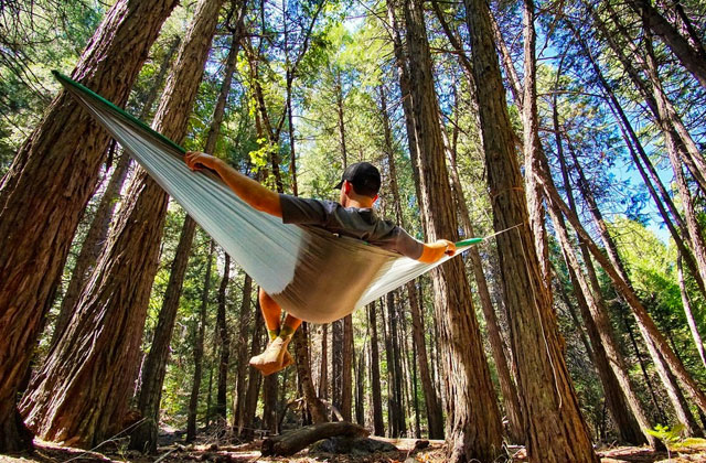 Best Hammocks for Total Relaxation