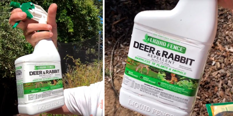 Review of Liquid Fence 32-Ounce Deer & Rabbit Repellent Ready-to-Use