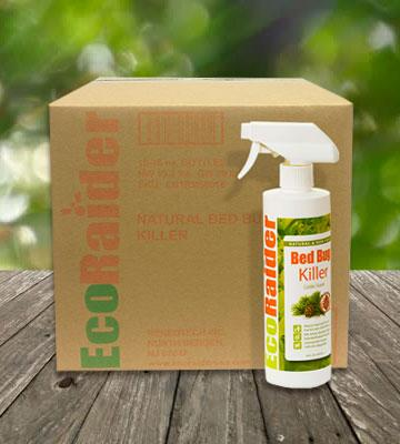 Review of EcoRaider Non-toxic Bed Bug Killer