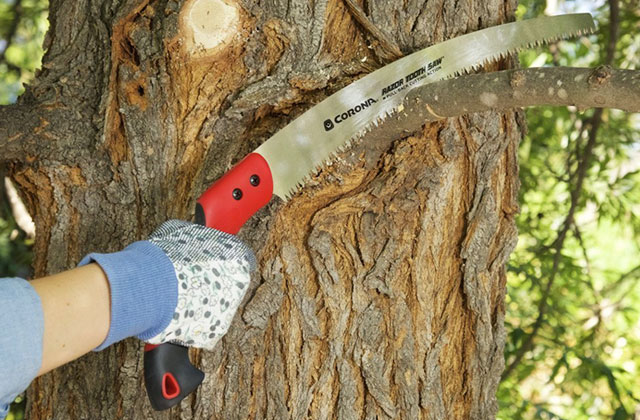 Best Handsaws for Trouble-Free Cutting