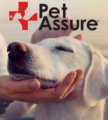 Review of Pet Assure America's Veterinary Discount Plan