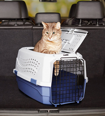 Review of AmazonBasics 6009-M Two-Door Top-Load Pet Kennel