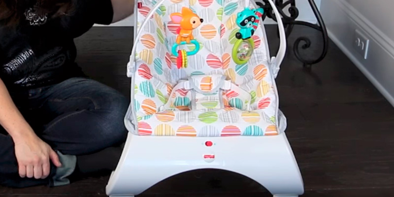 Review of Fisher-Price CFB88 Comfort Curve Bouncer
