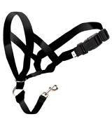 Shiny-GoGo Gentle Leader Headcollar