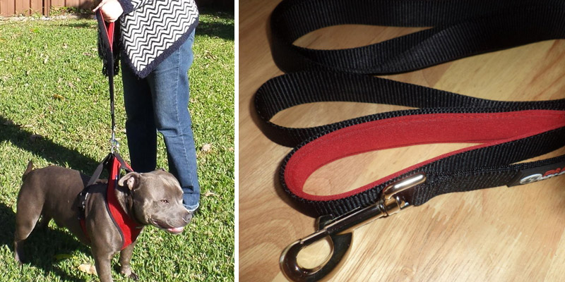 Review of Primal Pet Gear Double Handle 8 ft