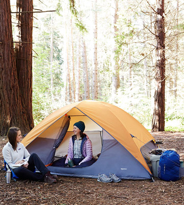 Review of AmazonBasics AMZ-1509 Family-size camping tent