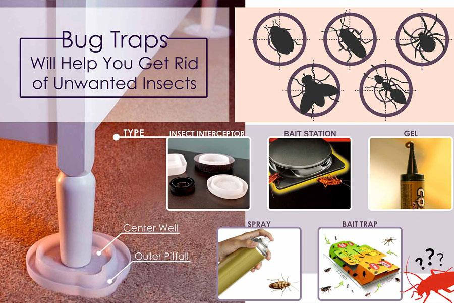 Comparison of Stink Bug Traps to Help You Get Rid of Insects