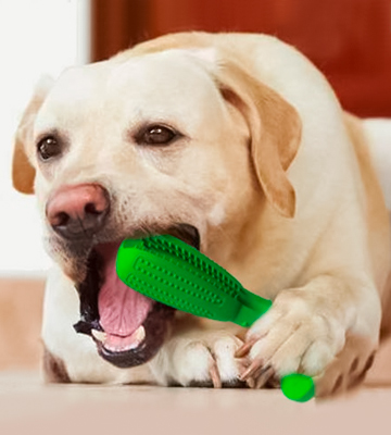 Review of Wisedom Dog Toothbrush Stick-Puppy Effective Doggy Teeth Cleaning Massager