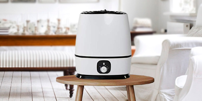 Review of Everlasting Comfort Ultrasonic Humidifier with Adjustable Knob and 360 Deg. Nozzles