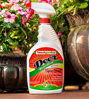 Review of IMUSTGARDEN 32oz Deer Repellent: Ready-to-Use Deer Spray
