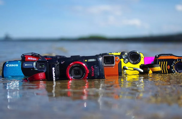 Best Waterproof Cameras for Taking Pictures Underwater