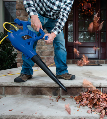 Review of Sun Joe SBJ606E-GA-SJB 4-in-1 Electric Blower/Vacuum/Mulcher