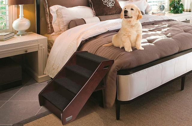 Best Pet Ramp and Stairs