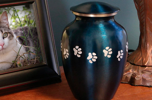 Best Pet Urns for Dogs and Cat Ashes