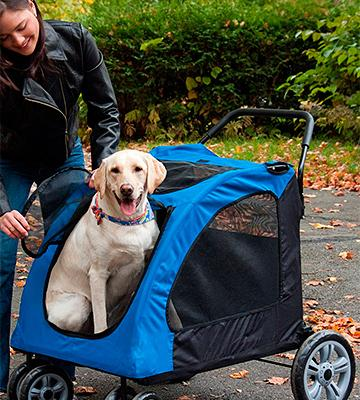 Review of Pet Gear Expedition Pet Stroller for Cats and Dogs