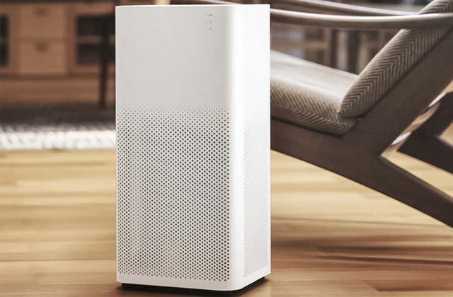 Best Air Purifiers to Stop Allergy Symptoms