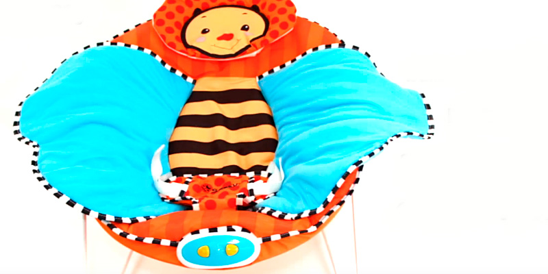 Detailed review of Sassy 70019 Cuddle Bug Bouncer