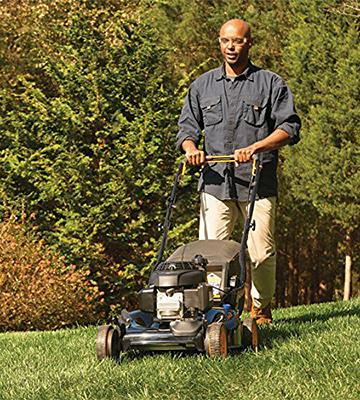 Review of Poulan Pro 961120131 2-in-1 Lawn Mower