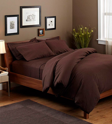 Review of Pinzon by Amazon Italian Roast Heavyweight Velvet Flannel Sheet Set