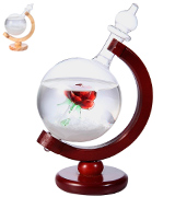 Aolvo Storm Glass Globe Weather Glass with Rose Inside