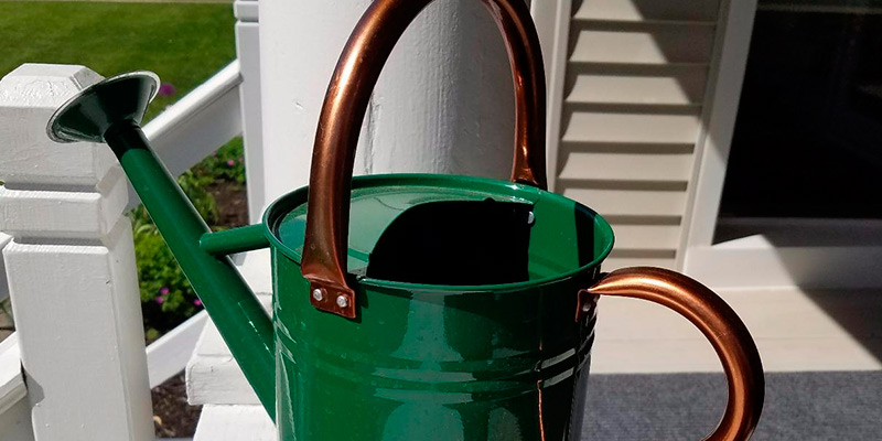 Review of Gardman Hunter 8327 Galvanized Steel Watering Can