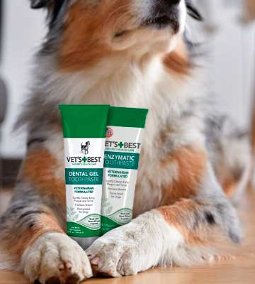 Review of Vet's Best Enzymatic Dog Toothpaste