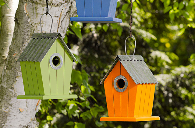 Best Bird Houses for Your Garden and Porch